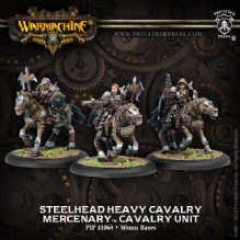 Mercenary Steelhead Heavy Cavalry (3)